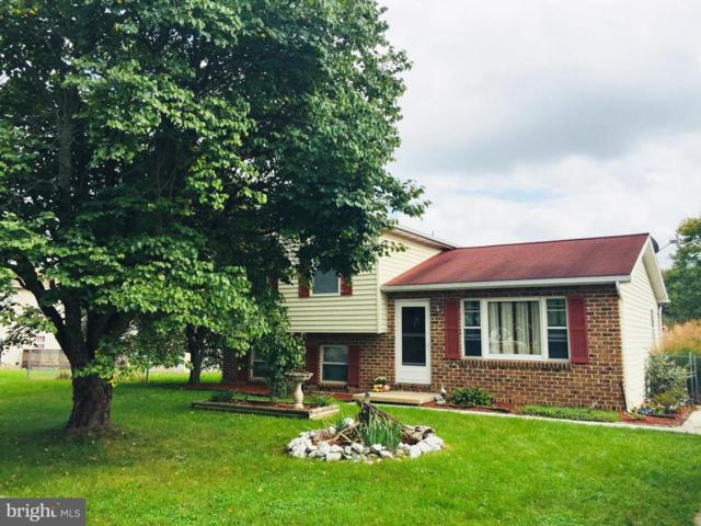 3240 E Pheasant Drive, DOVER, PA 17315 (#1009909628) :: Benchmark Real Estate Team of KW Keystone Realty