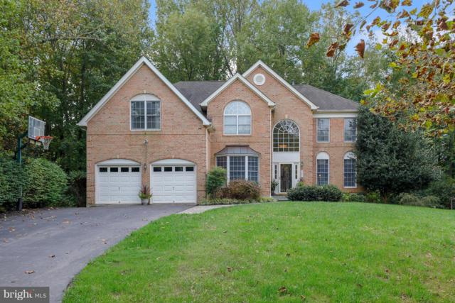 303 Gray Dragon Place, EDGEWATER, MD 21037 (#1009909670) :: Colgan Real Estate