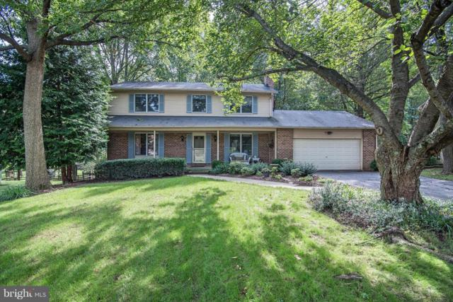 10073 Waterford Drive, ELLICOTT CITY, MD 21042 (#1009909968) :: The Bob & Ronna Group