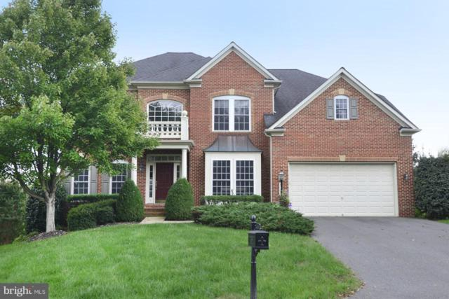 43283 Thaddeus Lane, LEESBURG, VA 20176 (#1009910410) :: The Piano Home Group