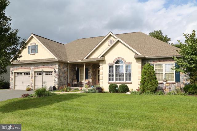 164 Pleasant Valley Road, EAST EARL, PA 17519 (#1009912748) :: Colgan Real Estate
