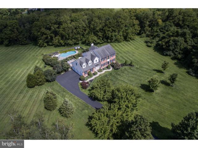 115 Meadow Lane, RIEGELSVILLE, PA 18077 (#1009912954) :: Erik Hoferer & Associates