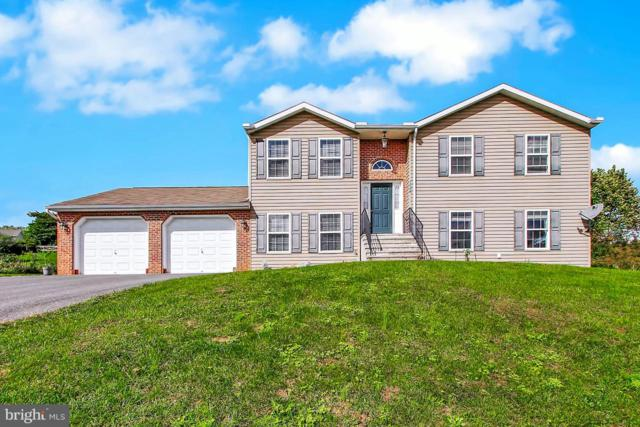 12179 Red Hawk Drive, WAYNESBORO, PA 17268 (#1009913698) :: The Heather Neidlinger Team With Berkshire Hathaway HomeServices Homesale Realty