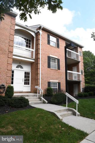 2 Ballycruy Court #202, LUTHERVILLE TIMONIUM, MD 21093 (#1009914000) :: The Dailey Group
