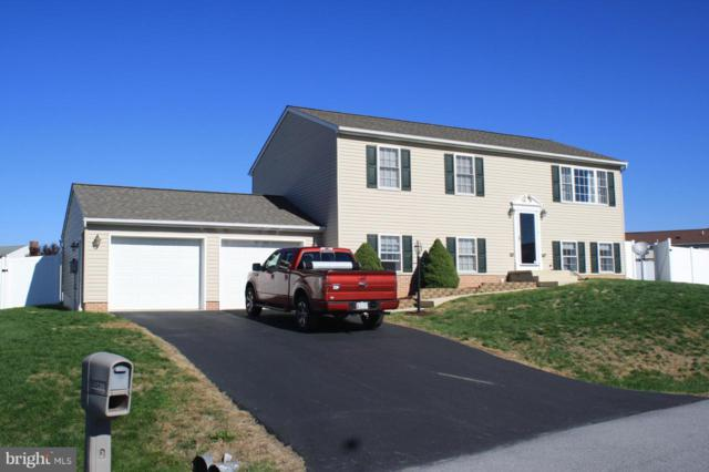 15954 Hosta Drive, HAGERSTOWN, MD 21740 (#1009918948) :: The Maryland Group of Long & Foster