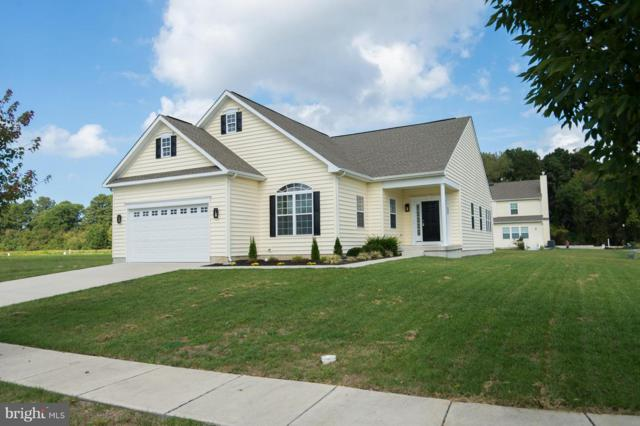 400 Regulator Drive, CAMBRIDGE, MD 21613 (#1009920236) :: Colgan Real Estate