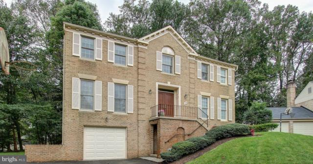 12004 Starview Court, POTOMAC, MD 20854 (#1009920736) :: Arlington Realty, Inc.