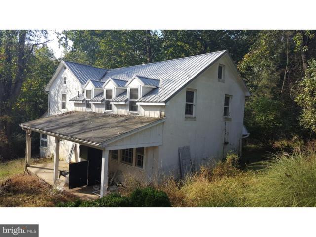 657 White Bear Road, BIRDSBORO, PA 19508 (#1009920754) :: Colgan Real Estate