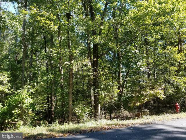 105 Gold Rush Drive, LOCUST GROVE, VA 22508 (#1009920802) :: The Licata Group/Keller Williams Realty
