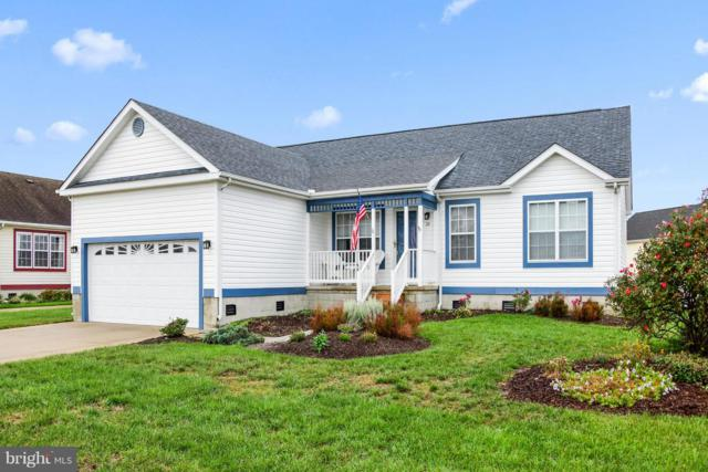 26 Windswept Drive, BERLIN, MD 21811 (#1009921014) :: Colgan Real Estate