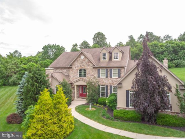1459 Jakes Place, LOWER SAUCON TWP., PA 18055 (#1009921282) :: Remax Preferred | Scott Kompa Group