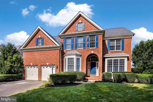 5586 Tournament Drive, HAYMARKET, VA 20169 (#1009925040) :: The Hagarty Real Estate Team