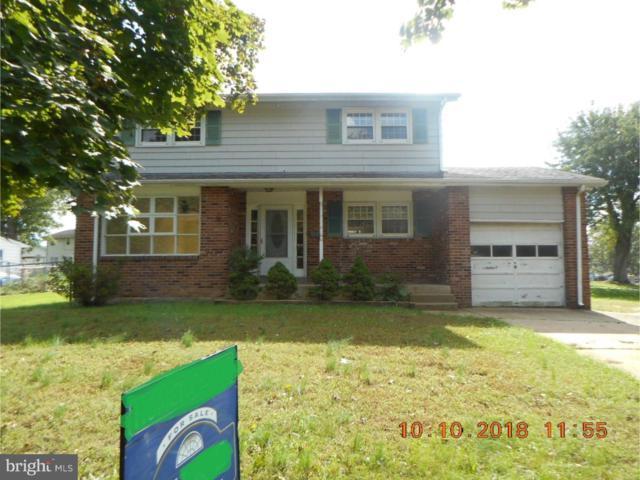 204 Forsythia Drive, NEWARK, DE 19711 (#1009925094) :: Colgan Real Estate