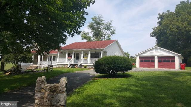 8305 Old National Pike, BOONSBORO, MD 21713 (#1009926062) :: ExecuHome Realty