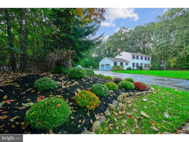 1 Holly Hill Drive, NEW EGYPT, NJ 08533 (#1009927416) :: Colgan Real Estate