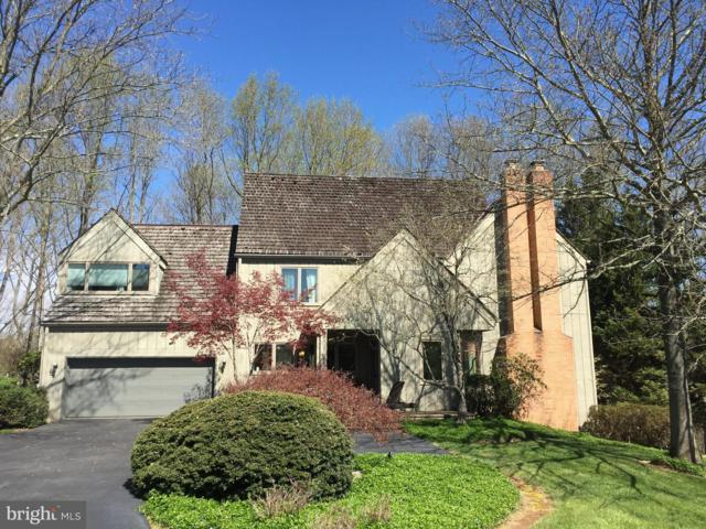 9102 White Chimney Lane, GREAT FALLS, VA 22066 (#1009927538) :: Great Falls Great Homes