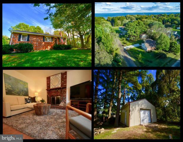 108 Dorchester Road, STEVENSVILLE, MD 21666 (#1009928034) :: Great Falls Great Homes
