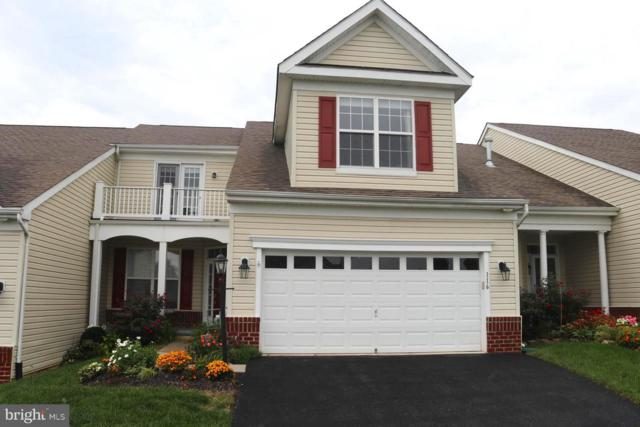 116 Touch Of Gold Drive, HAVRE DE GRACE, MD 21078 (#1009928104) :: Colgan Real Estate