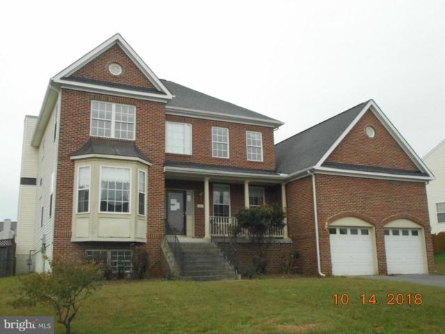 240 Rebecca Drive, WINCHESTER, VA 22602 (#1009928148) :: Labrador Real Estate Team
