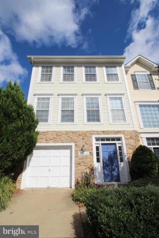 47326 Rock Falls Terrace, STERLING, VA 20165 (#1009928844) :: The Piano Home Group