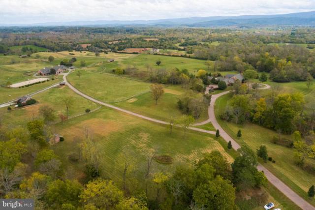 6586 John Mosby Highway, BOYCE, VA 22620 (#1009928964) :: Gail Nyman Group