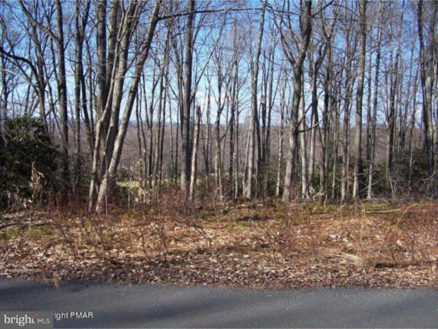 12 Wolf Hollow Road, LAKE HARMONY, PA 18624 (#1009929144) :: Colgan Real Estate