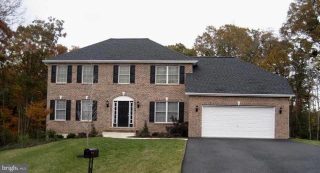 54 Range Road, NORTH EAST, MD 21901 (#1009929318) :: Maryland Residential Team