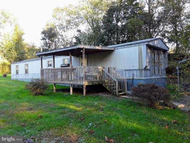 19 River Lane, MILLERSTOWN, PA 17062 (#1009932462) :: Remax Preferred   Scott Kompa Group