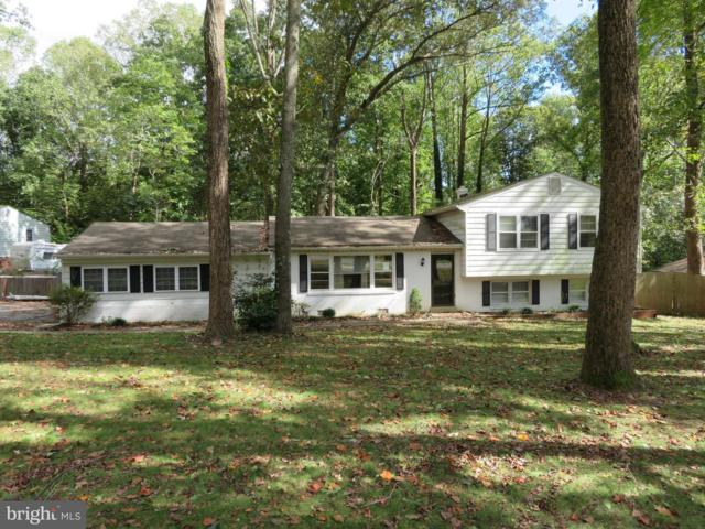 39441 Oak Court, MECHANICSVILLE, MD 20659 (#1009932796) :: Colgan Real Estate