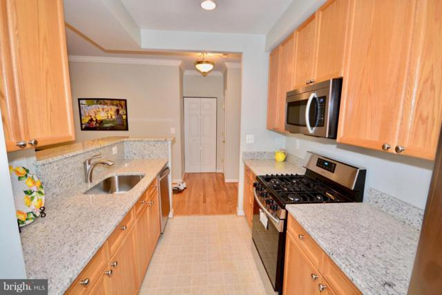 5112 Donovan Drive #205, ALEXANDRIA, VA 22304 (#1009933356) :: The Piano Home Group