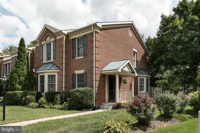 5031 Southern Star Terrace, COLUMBIA, MD 21044 (#1009933630) :: ExecuHome Realty