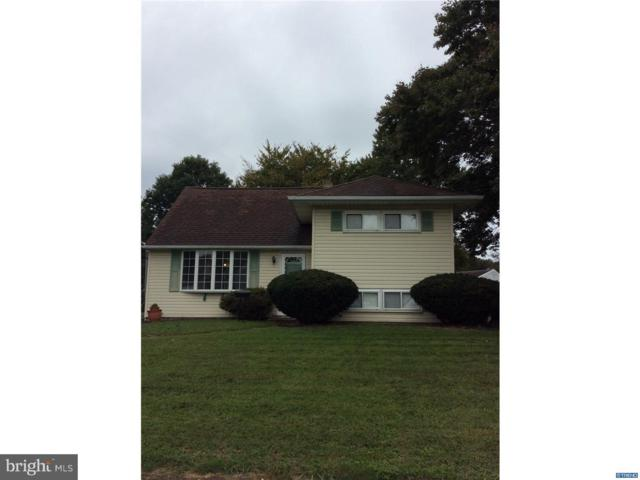 10 Matthews Road, NEWARK, DE 19713 (#1009933704) :: Remax Preferred | Scott Kompa Group