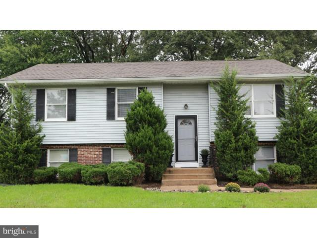 47 Winsome Way, NEWARK, DE 19702 (#1009934134) :: The Team Sordelet Realty Group