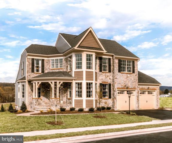 17289 Creekside Green Place, ROUND HILL, VA 20141 (#1009934190) :: LoCoMusings
