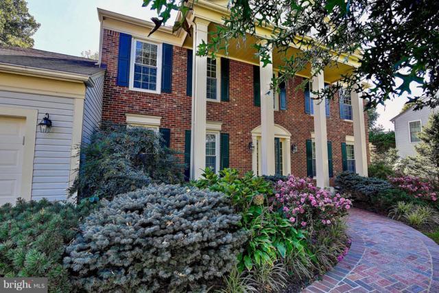 1317 Cassia Street, HERNDON, VA 20170 (#1009935050) :: Great Falls Great Homes