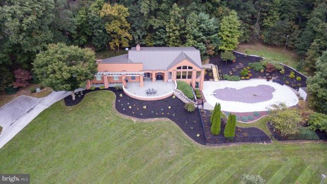 2095 Youngs Road, HANOVER, PA 17331 (#1009935082) :: The Heather Neidlinger Team With Berkshire Hathaway HomeServices Homesale Realty