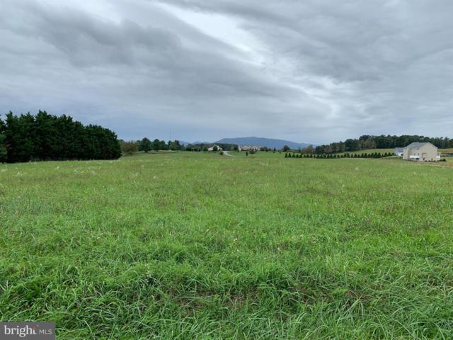 Lot 12 Klines Mill Road, MIDDLETOWN, VA 22645 (#1009935156) :: Remax Preferred | Scott Kompa Group