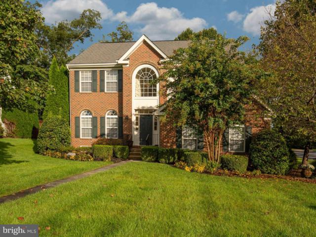 801 Sterling Drive, WINCHESTER, VA 22601 (#1009935476) :: The Maryland Group of Long & Foster