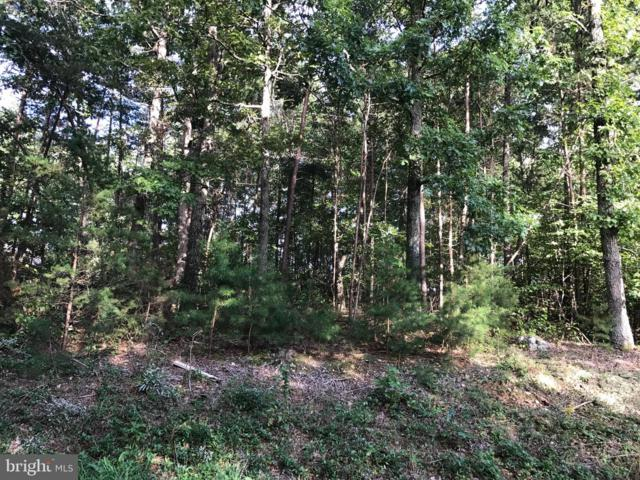 1202 Confederate Drive, LOCUST GROVE, VA 22508 (#1009936048) :: Remax Preferred | Scott Kompa Group