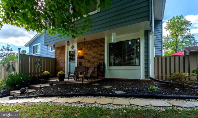 18721 Paprika Court, GERMANTOWN, MD 20874 (#1009939486) :: Great Falls Great Homes