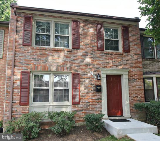277 Gundry Drive, FALLS CHURCH, VA 22046 (#1009939768) :: Browning Homes Group