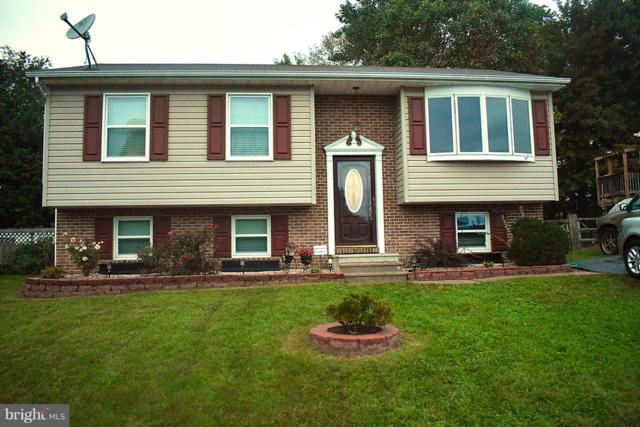 408 Gray Mount Circle, ELKTON, MD 21921 (#1009941134) :: Maryland Residential Team