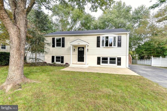 128 Milestone Road, ELKTON, MD 21921 (#1009942320) :: TVRG Homes