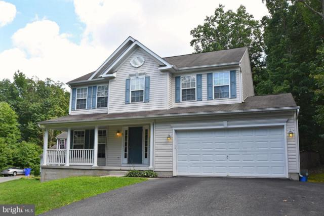 87 Red Toad Road, NORTH EAST, MD 21901 (#1009942460) :: Maryland Residential Team