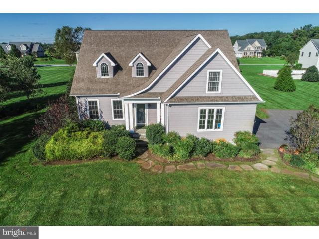 111 Egret Lane, CAMDEN WYOMING, DE 19934 (#1009942888) :: RE/MAX Coast and Country