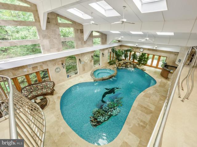 313 Tower Road, SELLERSVILLE, PA 18960 (#1009943196) :: Colgan Real Estate