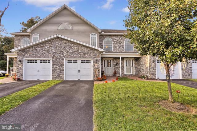 321 Briar Ridge Circle, ENOLA, PA 17025 (#1009946366) :: The Joy Daniels Real Estate Group