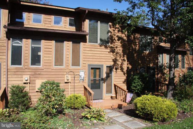 9 Laurel Brook Drive, OAKLAND, MD 21550 (#1009948498) :: Maryland Residential Team