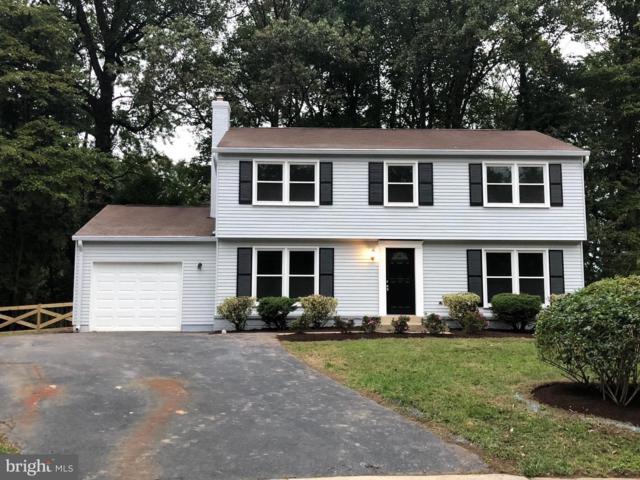 12802 Briery River Terrace, HERNDON, VA 20170 (#1009949998) :: Great Falls Great Homes
