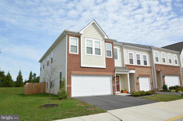 41688 Moors Mine Terrace, ALDIE, VA 20105 (#1009950150) :: Pearson Smith Realty